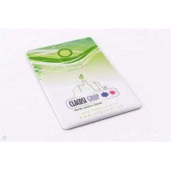 USB CARD PERSONALIZAT 4GB PLASENCIA ALB