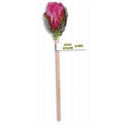 ACADELE PERSONALIZATE TRANDAFIR 40G FLOWER