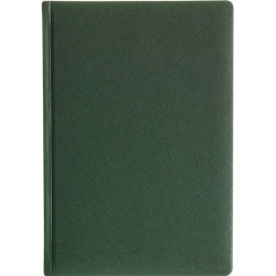 AGENDA PERSONALIZATA NOTES HAWAII A5 VERDE