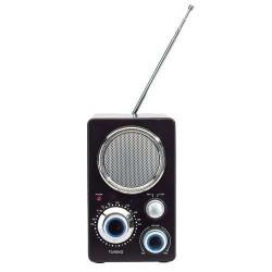 RADIO FM MINNIE NEGRU